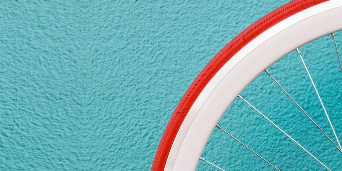 rowerowe koło życia